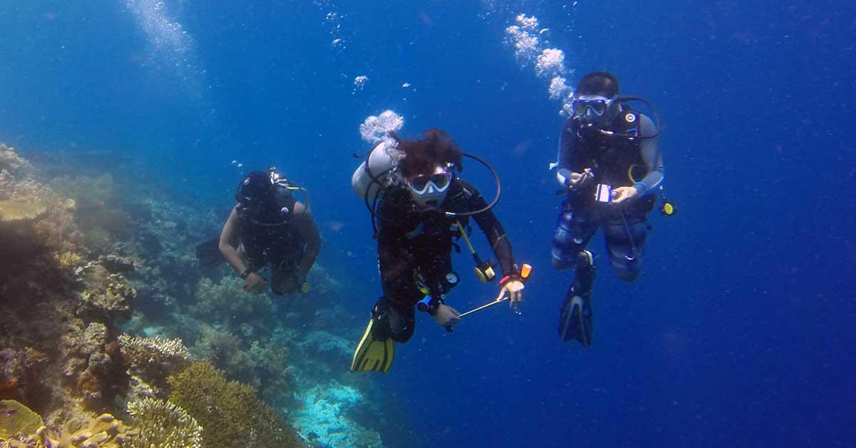 Rüyada Denize Dalmak Ne Anlama Gelir?