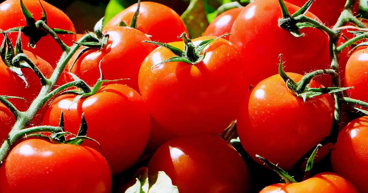 Rüyada domates görmek ne anlama gelir?