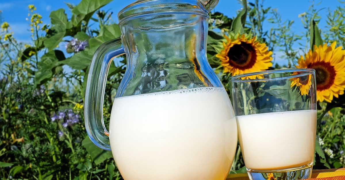 Rüyada inek sütü görmek ne demek?