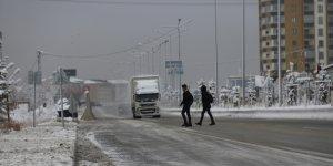 Ağrı'da soğuk hava besicileri olumsuz etkiledi.