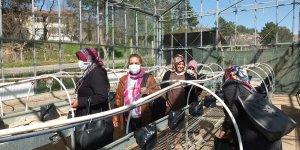 Keban MYO sera ve bağ tesisi, Keban Belediyesine devredildi