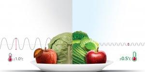 LG NatureFRESH, gıdaları uzun süre taze tutuyor
