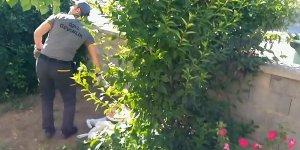 Güvenlik görevlisine karga saldırısı