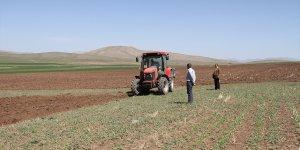 Özalp'te yağışların az olması çiftçileri düşündürüyor