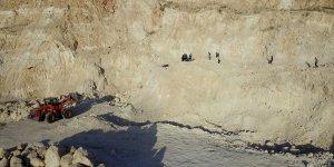 Erciş'te uçurumdan düşen at 5 saatlik çalışmayla kurtarıldı