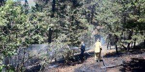 Kars'ta dün çıkan örtü yangını söndürüldü
