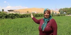 23 yıllık komşunun UNESCO sevinci