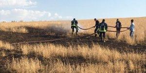 Özalp'ta buğday ekili 3 dönümlük tarlada çıkan yangın zarara neden oldu