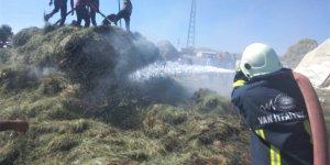 Özalp'ta 2 bin bağ ot yandı