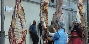 TDV, Van'da ihtiyaç sahiplerine kurban eti ulaştırdı