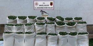 Bingöl'de 665 kilo esrar, 10 bin kök kenevir ele geçirildi