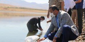 Elazığ'da 100 bin bin yavru sazan balığı gölete bırakıldı
