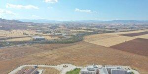 Elazığ'da 100 hektarlık alanda 46 bin adet fidan dikilecek