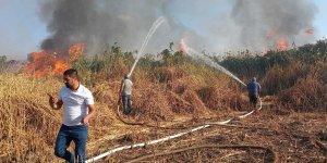 Tatvan'da sazlık alanda yangın