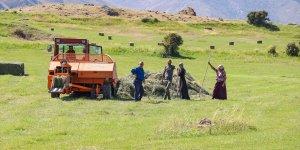 Ağrı Dağı eteklerindeki çiftçiler kış hazırlığına başladı