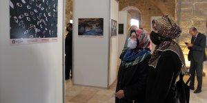Malatya'da 'Foto Akademi' sergisi açıldı