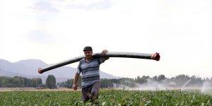Şeker pancarı alım fiyatının yükselmesi Muş'taki çiftçileri sevindirdi