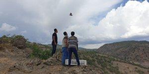 Bingöl'de 400 keklik doğaya salındı