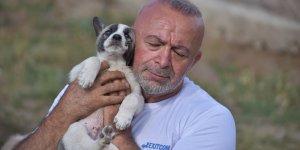 'Empati' adını verdiği karavanıyla şehir şehir gezen hayvansever 'can dost'lara şefkat elini uzatıyor