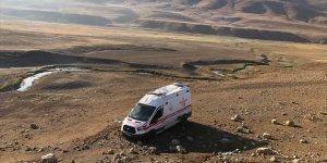 Bingöl'de köpeğe çarpmamak için manevra yapan ambulans şarampole devrildi