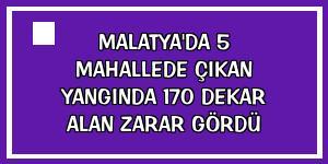 Malatya'da 5 mahallede çıkan yangında 170 dekar alan zarar gördü