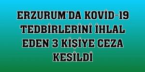 Erzurum'da Kovid-19 tedbirlerini ihlal eden 3 kişiye ceza kesildi