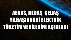 AEDAŞ, BEDAŞ, ÇEDAŞ yılbaşındaki elektrik tüketim verilerini açıkladı