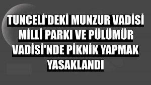 Tunceli'deki Munzur Vadisi Milli Parkı ve Pülümür Vadisi'nde piknik yapmak yasaklandı
