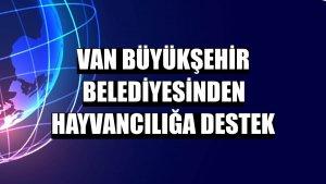 Van Büyükşehir Belediyesinden hayvancılığa destek