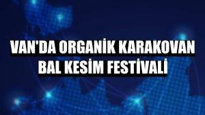 Van'da Organik Karakovan Bal Kesim Festivali