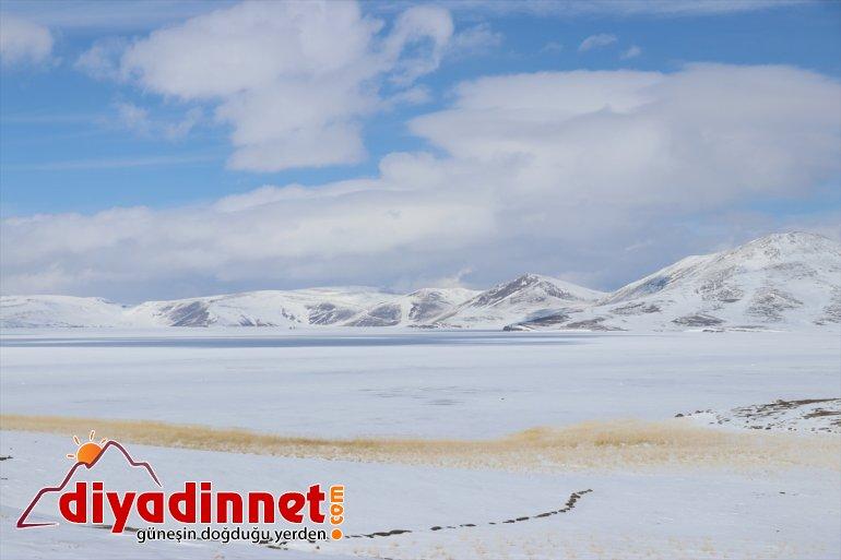 """Ağrı'daki """"1. Balık Gölü Kış Festivali"""" iptal edildi"""
