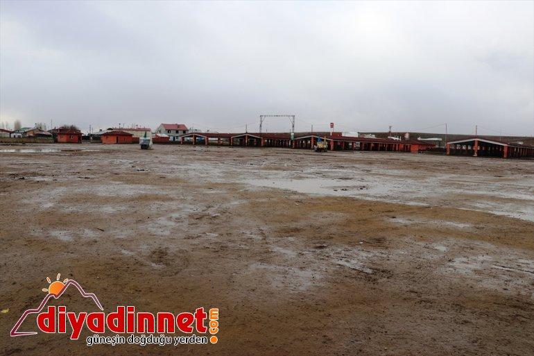Kars kapatıldı Ağrı'daki hayvan tedbirleri koronavirüs canlı kapsamında ve pazarları 5