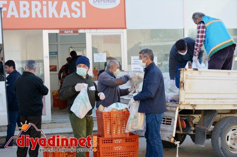 Darende'de vatandaşlara 21 bin ücretsiz ekmek dağıtıldı