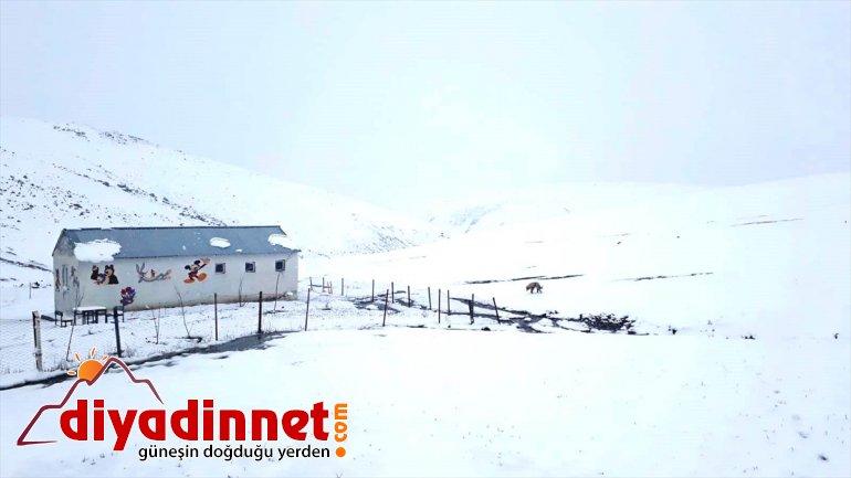 Ağrı'da nisanda yağan kar köylerde yaşamı olumsuz etkiledi