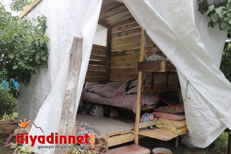 hasar Ağrı'da evleri yaşam yağışlardan gören tahsis konteyneri aileye edildi 1