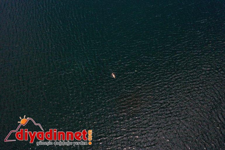 Yüzücüsü Deliveli, yüzerek - Maraton IĞDIR Ağrı'daki Emre Gölü'nü geçti Balık 5