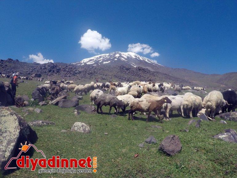 ve - çöl iklimini kutup çatısı yaşıyor AĞRI Türkiye'nin birlikte 6