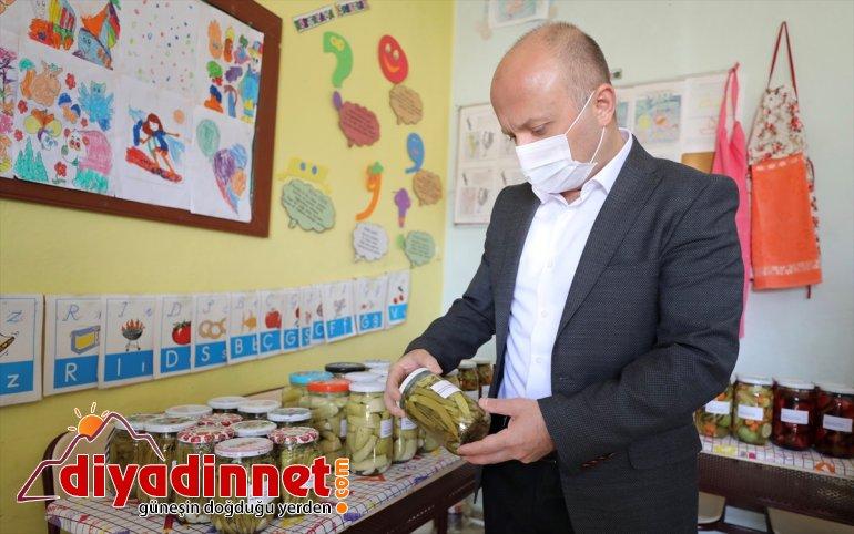 köyünde hasat dağ öğretmen yaptı Valisi, Ağrı ihtiyaçları çiftle sebze için okulun üreten 2