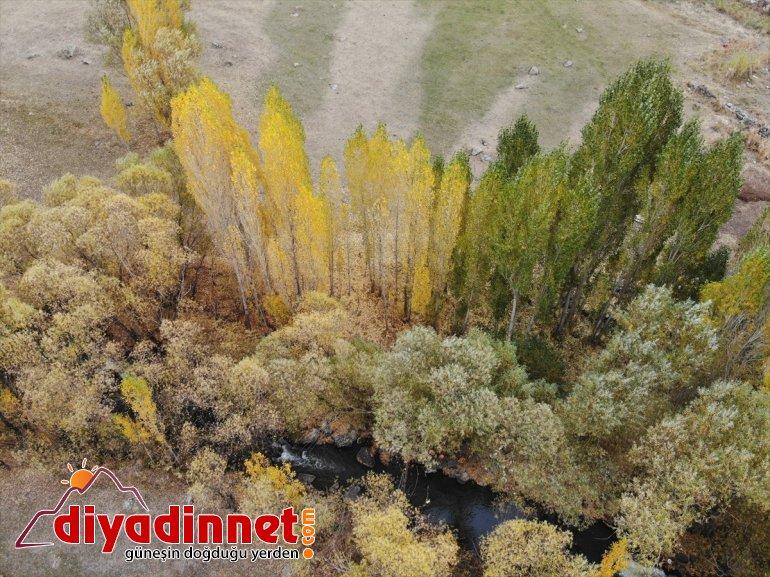 görsel sunuyor cümbüşü doğa şölen Ağrı'da renk oluşan sonbaharla 8