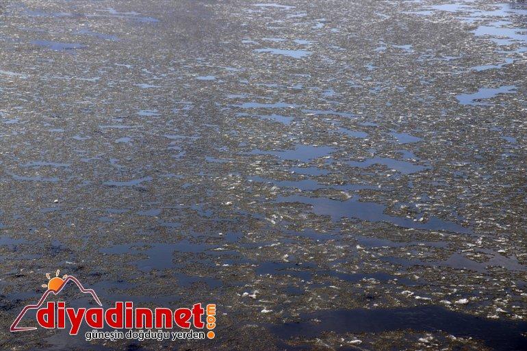 buzlar Nehri'nin Murat akan şölen görsel sundu yüzeyinde 3