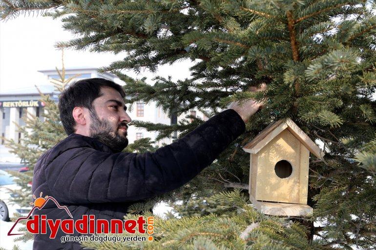 evleri yuva' olacak hayvanlarına Ağrı'da barınma 'sıcak sokak 3