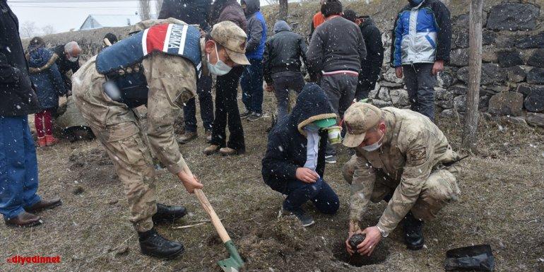 Kars'ta jandarma ekipleri ile öğrenciler 200 fidanı toprakla buluşturdu