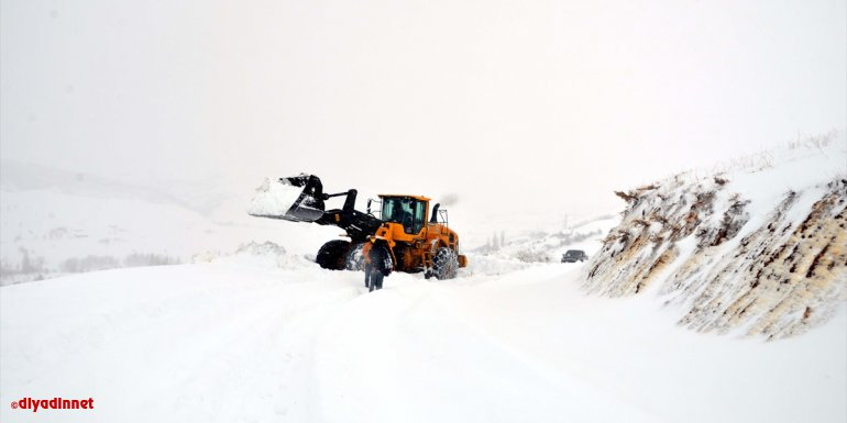 VAN - Kar yağışı etkili oldu1