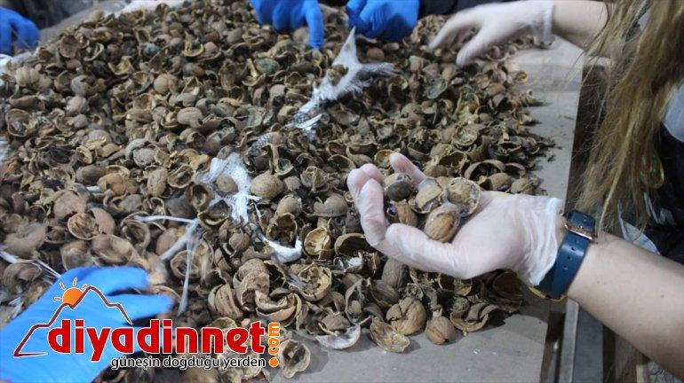 afyon Kapısı'nda ele AĞRI geçirildi gram kilo Gürbulak Sınır 550 - sakızı 153 2