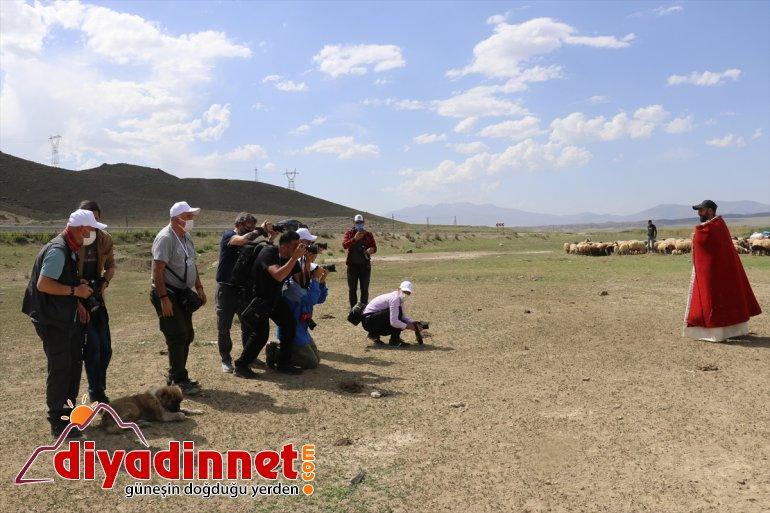 AĞRI Safari Ulusal fotoğraf ilgi Yarışması'na gösterdi '2. Foto yoğun - tutkunları 3