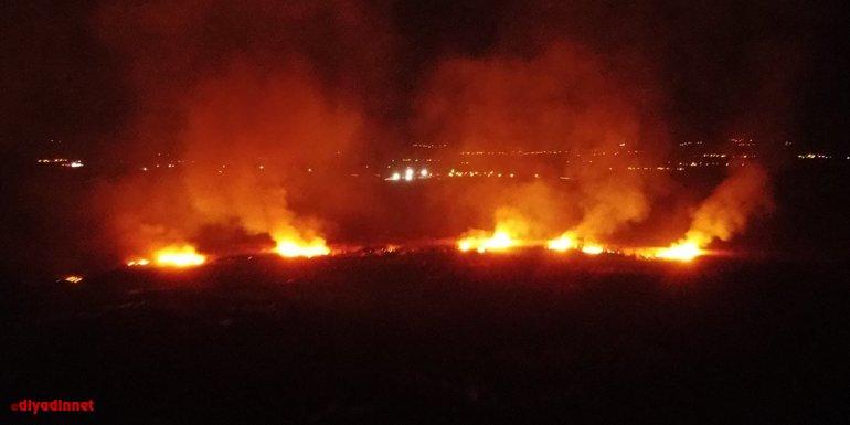 Erzincan'da koruma altındaki Ekşisu Sazlık Alanı'nda yangın çıktı