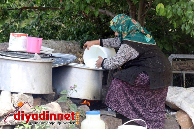 Ağrılı kadınlar kış kahvaltılarının vazgeçilmezi çeçil peynirinin üretimi için zorlu mesaide2