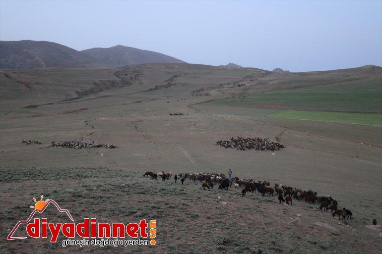 sıcak yayla hava Anadolu'daki nedeniyle zorlu yolculuğu geçiyor Doğu 11