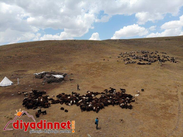 sahibi desteğiyle ziyaret Varol, çiftçileri koyun etti Ağrı yaylada AĞRI - Valisi olan devlet 10