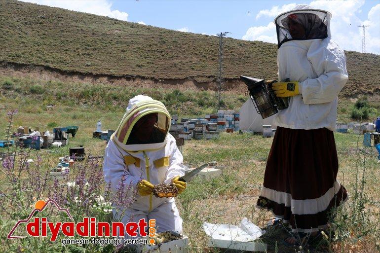mesaisinde çalışkan bal kadınları Karadeniz'in zorlu (Drone destekli) yaylalarında Ağrı 3